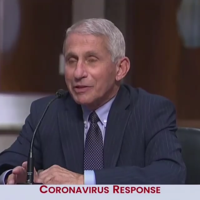 Rand Paul just ROASTED Dr. Fauci to his face for the entire world 9-7-2020