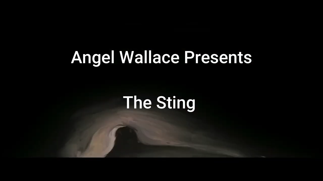 The Sting 20-8-2020