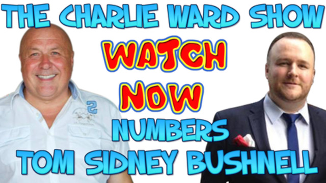 SUEZ CANAL, EVERGREEN & The QFS WITH TOM NUMBERS & CHARLIE WARD 25-3-2021