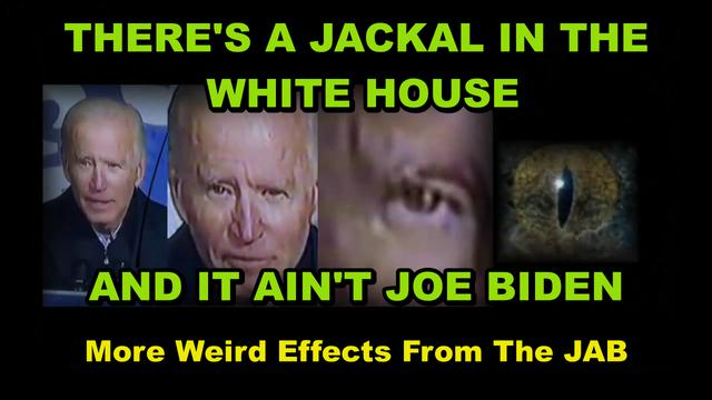 """THE VACCINE AND ITS DEADLY EFFECTS ON YOU – THERE""""S A JACKAL IN THE WHITE HOUSE AND IT""""S DEMONIC 4-7-2021"""