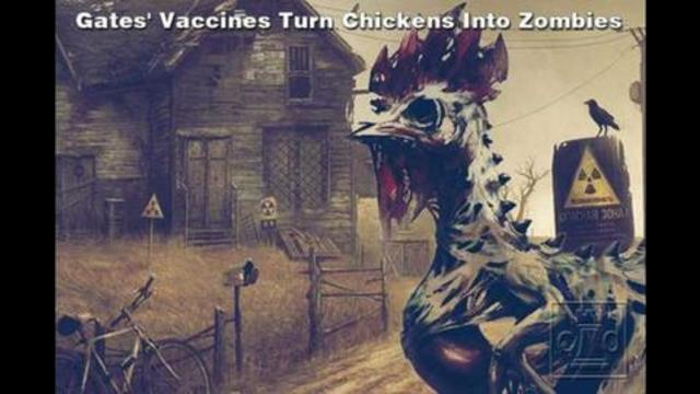 Bill Gates' Vaccines Turned Chickens Into Zombies – Booster shots killed them all 28-8-2021