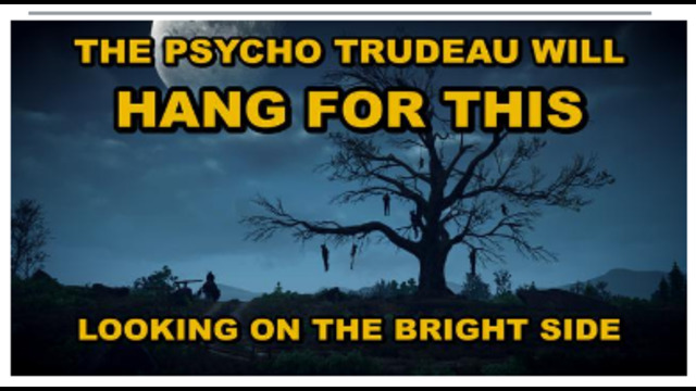 LOOKING ON THE BRIGHT SIDE – TRUDEAU WILL BE ARRESTED AND HANGED – DO NOT COMPLY TO ANYTHING !! 20-8-2021