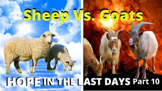 The Separation of the Sheep and Goats   Hope in the Last Days Part 9 6-5-2020