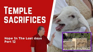 The Temple Sacrifices   Hope in the Last Days Part 11 22-5-2020